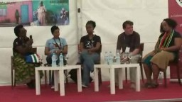 Discussion Panel on HIV in South Africa 2010 - 3