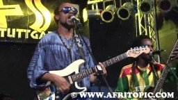 Sattatree in Concert 2014 - 3