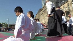 Japan Day, Aikidô, 2014 - 1