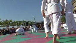 Japan Day, Aikidô, 2014 - 2