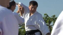 Japan Day, Aikidô, 2014 - 5