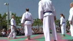 Japan Day, Karate, 2014 - 1
