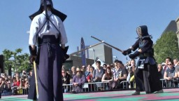 Japan Day, Kendô, 2014 - 8