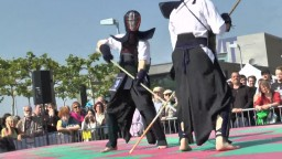 Japan Day, Naginata, 2014 - 7