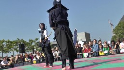 Japan Day, Naginata, 2014 - 8