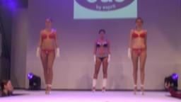 Fashion Show, 2013 - 16
