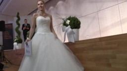 Wedding Exhibition, 2014 - 2